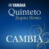 Quinteto Sopro Novo lança o CD 'Cambia'